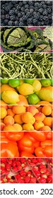 Vertical vegetable rainbow collage