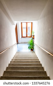Vertical view of hall interior in Italian apartment home with window and green plants looking down high angle above steps stairs in hallway