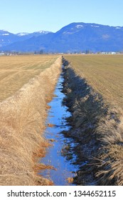 Vertical view of a shallow canal in the early Spring season and the threat of water shortages in the coming agricultural season.