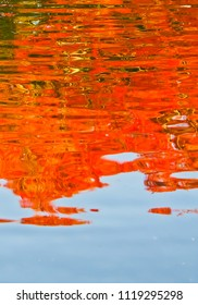vertical view of water reflection of colorful autumn foliage in the pond of koko-en garden himeji japan