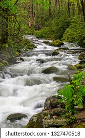 Vertical-A scenic white water stream in Smokies spring.