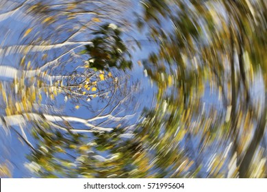 Vertigo, Dizzy, Nature, Illness, Swirl/Autumn Swirling Trees