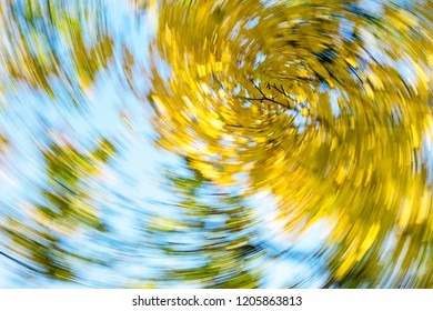 Vertigo, Dizzy, Tree impression, Illness, Swirl/Autumn Swirling Trees