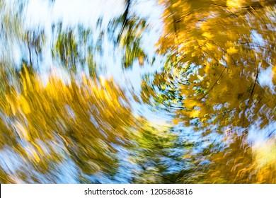 Vertigo, Dizzy, Tree impression, Illness, Swirl/Autumn Swirling Trees