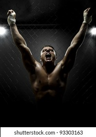 vertrical photo  muscular young  guy street-fighter,  triumphant cries  yell , hard light