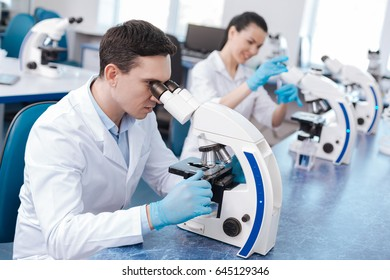 Very attentive lab assistant working with microscope