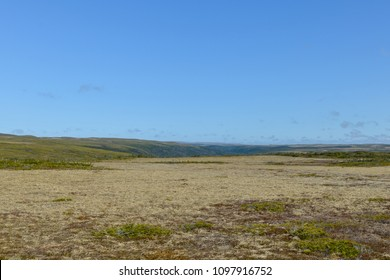 A very barren area with yellow marsh land and hills in the distance. There's a drop off for a canyon in the middle with green grass and covering. The sky is bright blue with very little clouds.