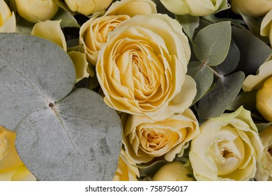 Very beautiful flowers in a bouquet shot by a macro shot, the best gift for a girl is a gorgeous bouquet of flowers