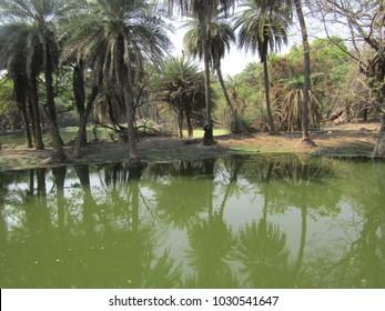 a very beautiful lake