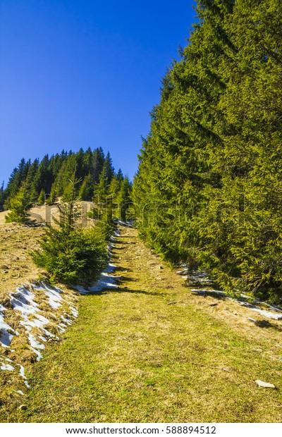 Very beautiful mountains on Carpathian, Western Ukraine