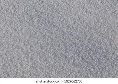 Very beautiful snow cover on a winter day