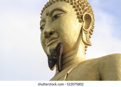 The very big beehive on big buddha statue