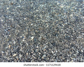 The very clear and transparent seabed with seashells. The Black Sea water surface. The water seabed texture and background.