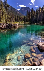 Very clear water with some rocks and pine trees in a blue sky day in Banff National Park in Canada