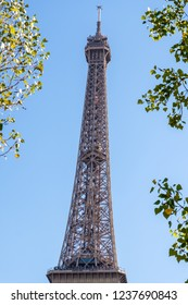 Very close view to the top of Eiffel Tower. Framed throw the leaves of the trees. Very sunny day with no clouds in the city. A few boats on the river Seine. Paris, France