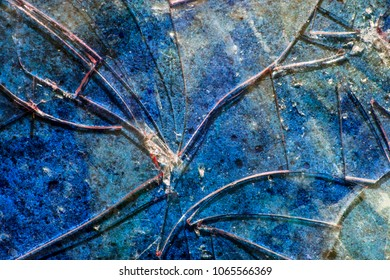 Very Distressed Gothic Grunge Shattered Glass Close Up Abstract
