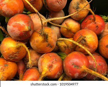 very healthy Organic Gold beets fresh from harvest