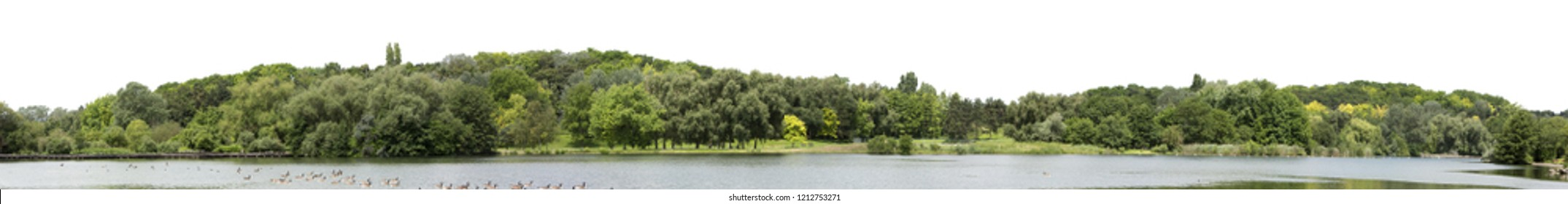 Very high definition Treeline isolated on a white background