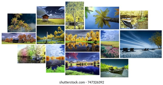Very High Resolution Collage of Edited Landscape Infrared Image