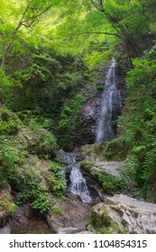 Very high waterfall in the forest, the Hossawa falls in Hinohara village. Tokyo, Japan.