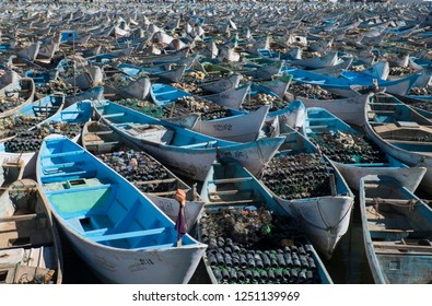 very much fishing vessels in Harbor in North africa