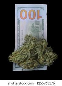 Very Nice clump of Top Grade Medical Marijuana sitting On a 100 Dollar Bill