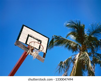 Very old basket bal goal and palm tree against clear blue sky