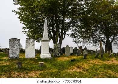 A very old cemetery with worn head stones and shade trees with yellow wild flowers dotting the unkept grass