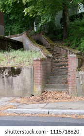 A very old concrete staircase lined by brick walls covered in moss and leaves leads upward into an unknown destination