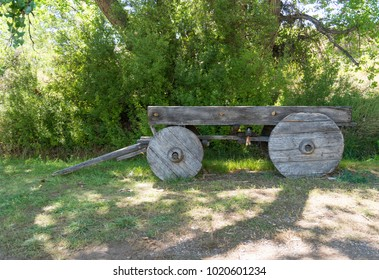 Very old, faded historical wooden wagon cart with solid wood wheels set against big green cottonwood trees.