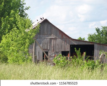 Very old farm building landscapes.