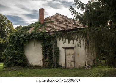 Very old spooky house in the forest