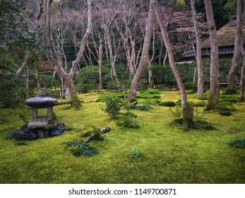 very pretty japanese park