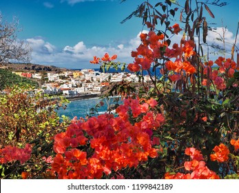 """very romantic view of the small town """"Las Aguas"""" on the north coast of Tenerife. In the foreground dark red Burganvilea, behind the dark blue Atlantic Ocean with the small white cube houses"""