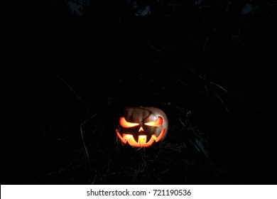 A very terrible Halloween pumpkin, with a menacing look and a smirk of a villain, in a dark dense forest among the branches