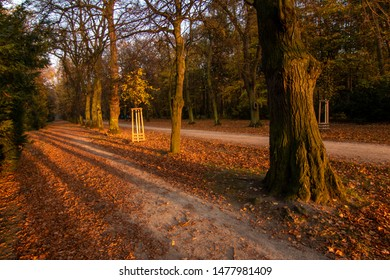 A very warm and bright autumn evening in a park. Long shadows, fallen leaves and a path leading through.