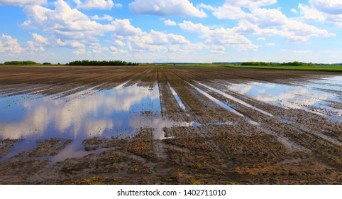 Very wet agriculture clay field with puddles of water due to the rain