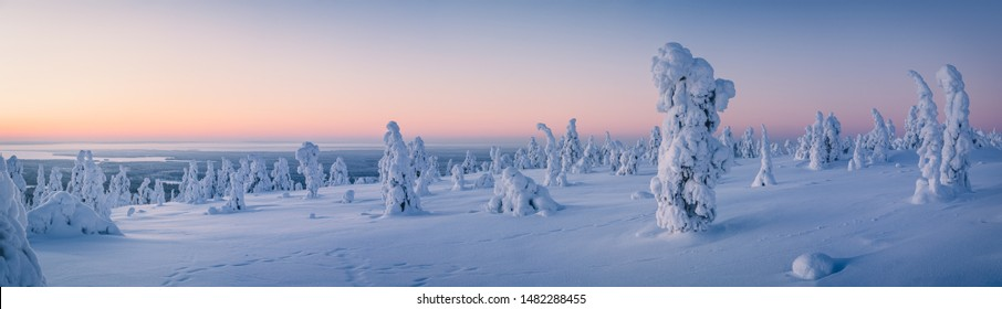 Very wide panorama of snow packed trees on Riisitunturi fell in Riisitunturi National Park, Posio, Finland - Shutterstock ID 1482288455