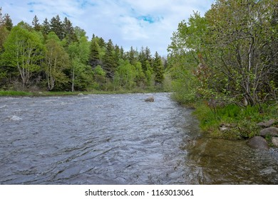 A very wide river with trees alongside the riverbanks. The sky is blue and there's white clouds.  The river is very calm and there's a large rock in the middle.
