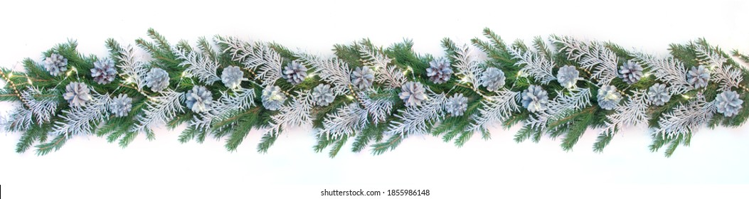 Very wide winter Christmas border banner with green fir branches, silver branches of thuya, silver cones, garland lights isolated on white.