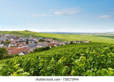 Verzenay village view among the vineyards, Champagne region, France, August 2017