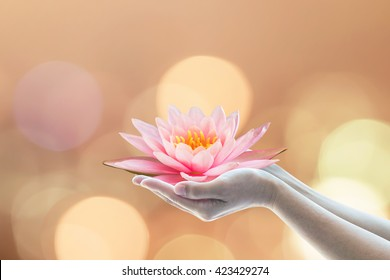 Vesak day, Buddhist lent day, Buddha Purnima and birthday worshiping concept with woman's hands holding water lilly or lotus flower