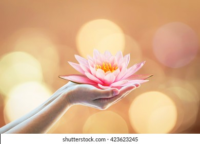 Vesak day, Buddhist lent day, Buddha Purnima and birthday worshiping, world human spirit day concept with woman's hands holding water Lilly or lotus flower