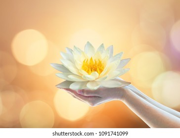 Vesak day, Buddhist lent day, Buddha's birthday, Purnima buddhism religious worshiping, and world human spirit concept with woman prayer's hand holding lotus water lilly flower praying and sacrificing