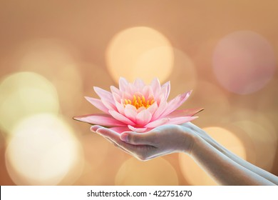 Vesak day, Buddhist lent day, Buddha's birthday, Buddha Purnima worshiping, and world human spirit concept with woman's hands holding water Lilly or lotus flower