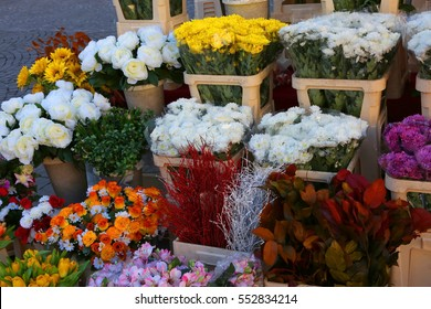 vessels with flowers for sale in the floriculture market