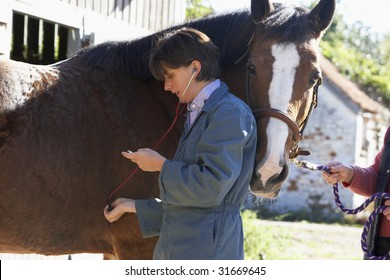 Vet Examining Horse With Stethescope