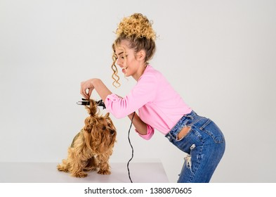 Vet. Pet salon. Petshop. Beauty salon for animals. Dog salon. Grooming. Grooming master making dog hairstyle. Pet grooming. Animal clinic.