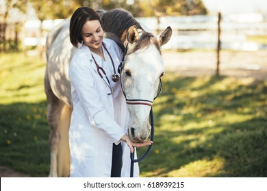 Vet petting a horse outdoors at ranch. Selective focus on horse.