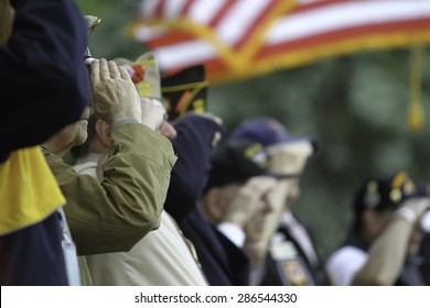 Veterans Salute the US Flag during  Memorial Day service.